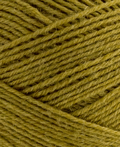 West Yorkshire Spinners Signature 4 Ply - Cardamom (351) - 100g