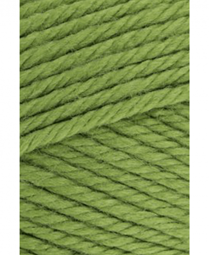 Red Heart - Soft - Kiwi Green (9809670_00010) - 100g