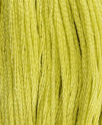 DMC Stranded Cotton - Shade 12 - 8m