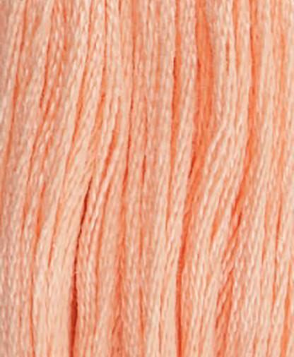 DMC Stranded Cotton - Shade 20 - 8m