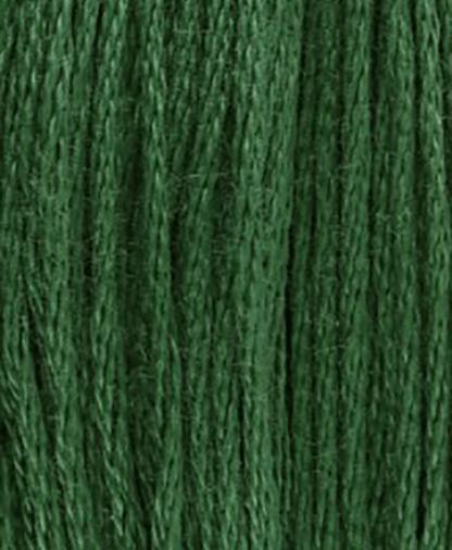 DMC Stranded Cotton - Shade 561 - 8m