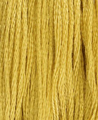 DMC Stranded Cotton - Shade 834- 8m