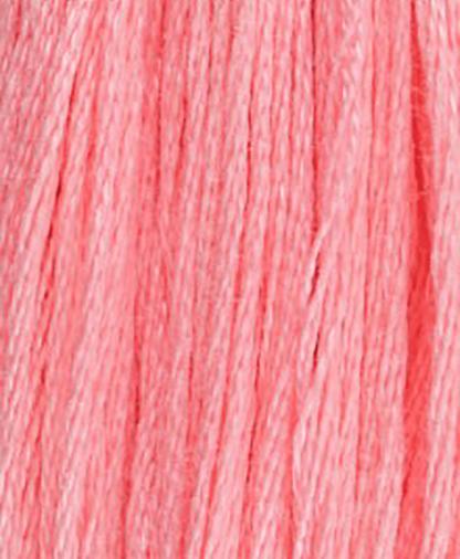 DMC Stranded Cotton - Shade 894- 8m