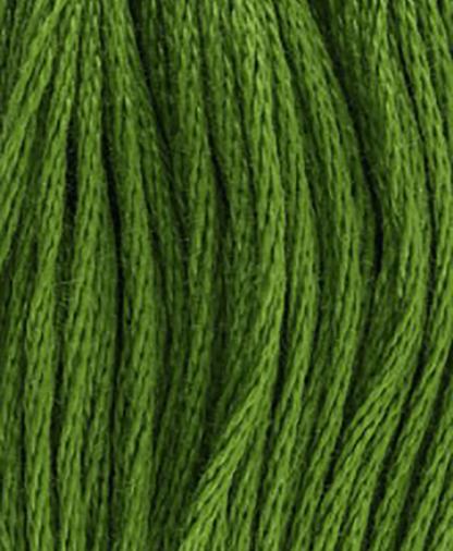 DMC Stranded Cotton - Shade 905- 8m