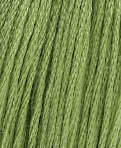 DMC Stranded Cotton - Shade 989- 8m
