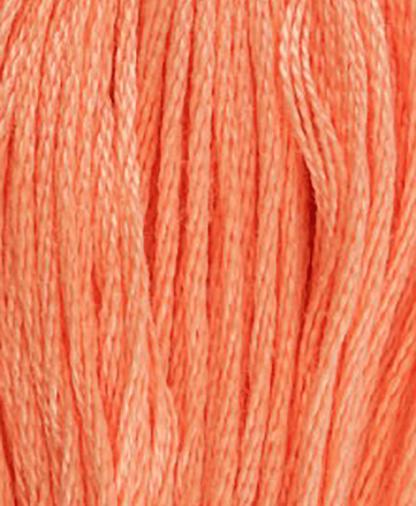 DMC Stranded Cotton - Shade 3341 - 8m