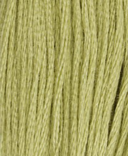 DMC Stranded Cotton - Shade 3348 - 8m
