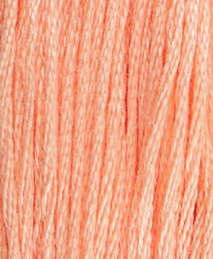 DMC Stranded Cotton - Shade 3824 - 8m