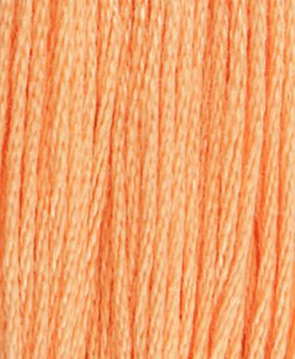 DMC Stranded Cotton - Shade 3825 - 8m