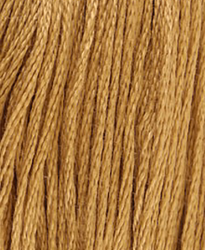 DMC Stranded Cotton - Shade 3828 - 8m