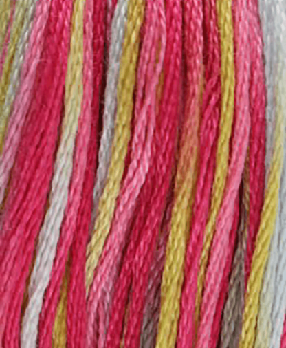 DMC Stranded Cotton - Coloris - Shade 4502 - 8m