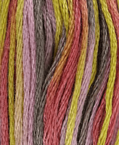 DMC Stranded Cotton - Coloris - Shade 4509 - 8m
