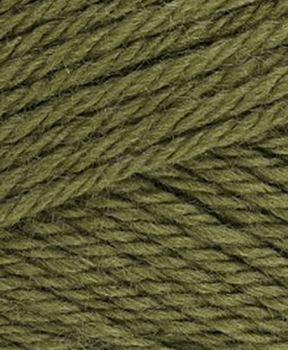 Sirdar Country Classic Worsted - Fern (672) - 100g