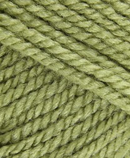 Stylecraft Special Aran - Meadow (1065) - 100g
