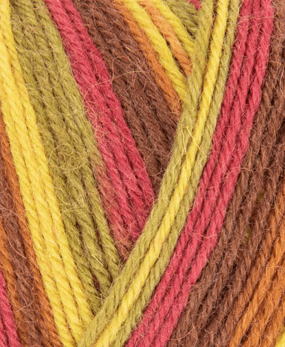 West Yorkshire Spinners - Signature 4 Ply - Autumn Leaves (885) - 100g
